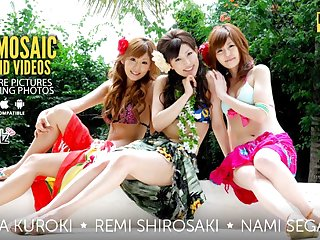 Rena Kuroki, Remi Shirosaki And Nami Segawa In Orgy - Avidolz